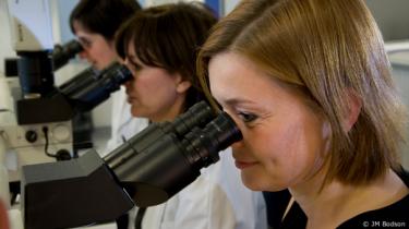 Examen de laboratoire en anatomie pathologique à l'Hôpital Erasme