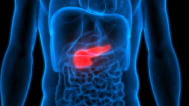 Etude cancer du pancréas
