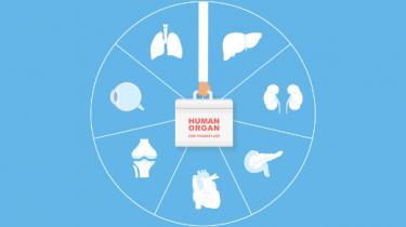 Formation coordinateur don d'organe et transplantation Hôpital Erasme