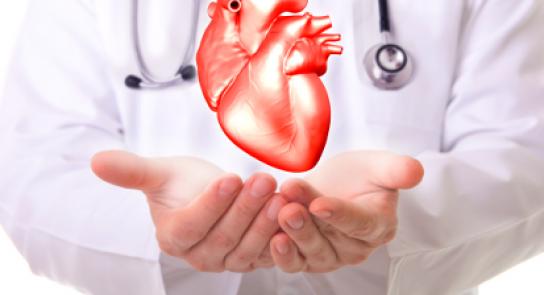 Photo d'un hologramme cardiologique