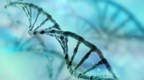 Présentation du Laboratoire de Génétique de l'Hôpital Erasme
