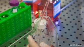 Accréditations ISO 15189 des laboratoires de l'Hôpital Erasme