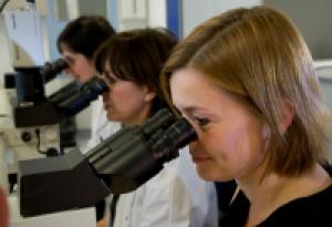 Laboratoires - Compendium des analyses